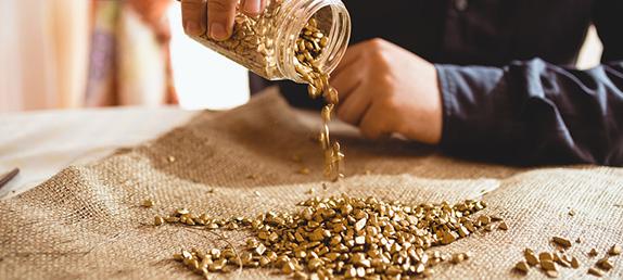 regula de aur